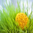 Decorated easter egg in the grass — Stock Photo