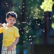 Little boy having fun with dandelion seeds — Stock Photo