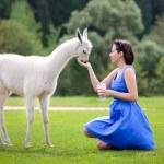 Young attractive woman feeding baby lama — Stock Photo