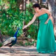 Young attractive woman feeding peacock — Stock Photo