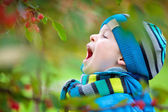 Cute little boy having fun in a garden — Stock Photo