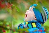 Cute little boy having fun in a garden — Stock Photo