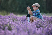 Cute little boy in lavender field — Stock Photo