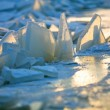 Forms of sea ice near the coast — Stok fotoğraf