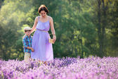 Woman and her little son in lavender field — Stockfoto