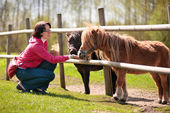 Young attractive woman feeding two ponies — Stock Photo