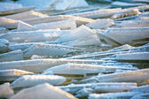 Forms of sea ice near the coast — Stock Photo