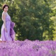 Young woman relaxing in lavender field — Stok fotoğraf #42555767
