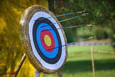 Arrows missed target. concept of fail-diligent — Stock Photo
