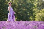 молодая женщина расслабляющий в сиреневом поле — Стоковое фото