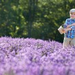 Cute little boy with basket in lavender field — Stockfoto