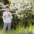 Cute little boy against bloom garden — Stock Photo #46045983