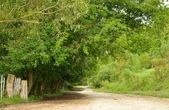 Obszarów wiejskich ścieżka — Zdjęcie stockowe