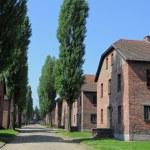 Concentration camp barracks — Stock Photo