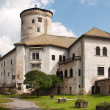 Stock Photo: Budatin castle
