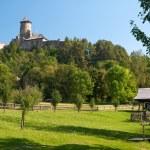 Stara Lubovna castle — Stock Photo