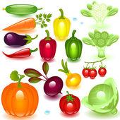 Set vegetable — Stock Vector