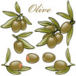 Set of green olives — Stock Vector