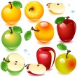 Stock Vector: Apples set