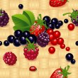 Wallpaper with different berry — Stock Vector