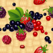 Stock Vector: Wallpaper with different berry