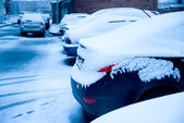 Cars powdered first snow — Stock Photo