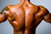 The back muscular man on gray background — Stock Photo