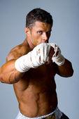 Retrato do lutador — Fotografia Stock