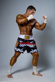 An experienced fighter kickboxer in a fighting stance. — Stock Photo