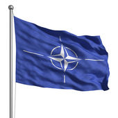 Flag of NATO — Stock Photo
