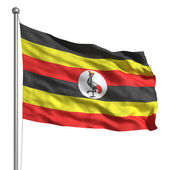 Flag of Uganda — Stock Photo