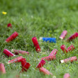 Shotgun Shells — Stock Photo #29947805