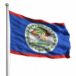 Flag of Belize — Stock Photo #30017899