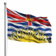 Flag of British Columbia — Stock Photo #30018217
