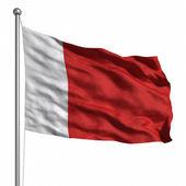 Vlajka dubaj — Stock fotografie