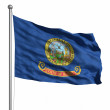 Flag of Idaho — Stock Photo