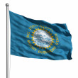 Flag of South Dakota — Stock Photo #30037141