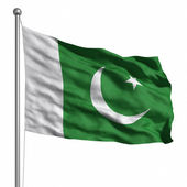 Flag of Pakistan — Stock Photo