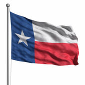 Flag of the Texas — Stock Photo