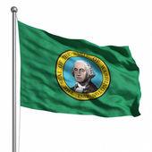 Washington bayrağı — Stok fotoğraf