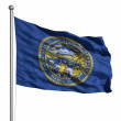 Flag of Nebraska — Stock Photo #30085883