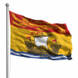 Flag of New Brunswick — Stock Photo