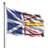 Flag of Newfoundland and Labrador — Stock Photo