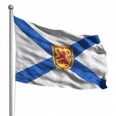 флаг новой шотландии — Стоковое фото