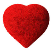 Fluffy Heart — Stock Photo