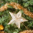 Star Ornament — Stock Photo