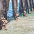 Beach Pier — Stock Photo