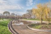 Park Pond — Stock Photo