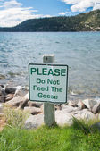 Geese Sign — Stock Photo