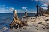 Kříž a mrtvé stromy na moře — Stock fotografie